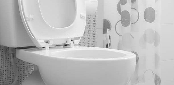 Een ruime keuze aan fontein toilet bij Toiletmarkt